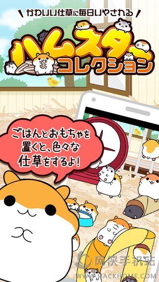 仓鼠收集游戏官方iOS版图1: