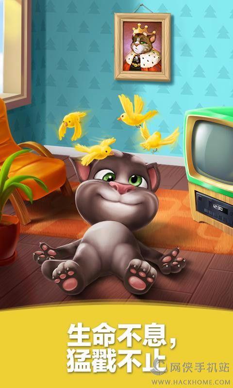 我的汤姆猫3.1.1官网最新版图1: