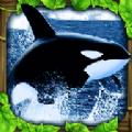 虎鲸模拟器中文版