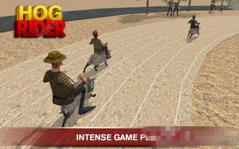 猪骑士游戏官方安卓版(HOG RIDER)图2: