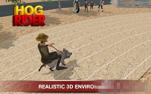 猪骑士游戏官方安卓版(HOG RIDER)图4: