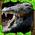 鳄鱼模拟中文版