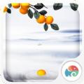 3D橘子红了梦象动态壁纸手机版app v1.4.5