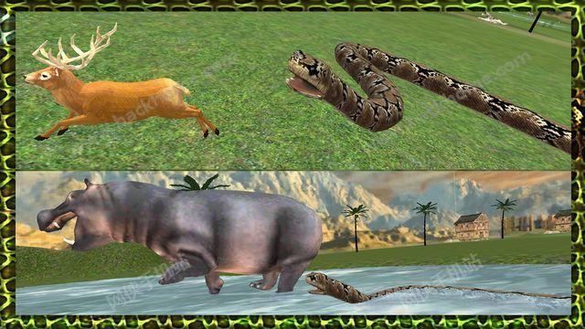 真正的森蚺蛇模拟器3D汉化中文破解版图2: