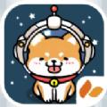 太空狗狗冠军游戏
