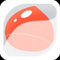 口袋栗子wifi app手机版下载 V1.2.8