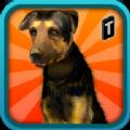街头狗狗模拟器3D