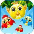 Bird Espace游戏