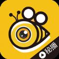 蜜色Live直播会员官网苹果ios最新版app v1.0