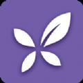 丁香园app