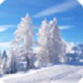 唯美冬天雪景动态壁纸