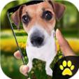 狗在屏幕上ios苹果版app手机软件最新下载地址 v1.2