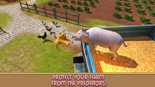 家猪模拟器的生活游戏ios版图1: