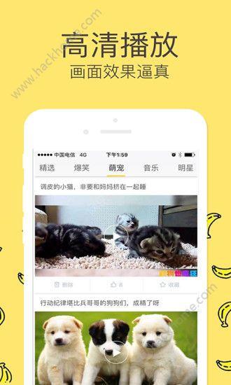 全新tv手机免费视频app官网下载图2: