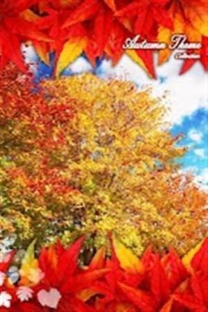 秋天的梦想主题壁纸APP图3