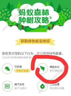 蚂蚁森林绿色办公是什么?蚂蚁森林钉钉绿色办公有什么用图片1