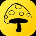 蘑菇丁官网版app下载 v2.1.4
