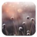 孕�D助手app手�C版 v2.0