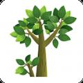 树报知道官方客户端app下载安装 v1.0.0