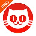猫眼专业版官网版
