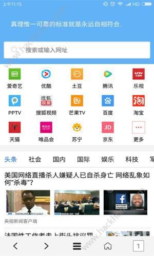VIP浏览器app图1
