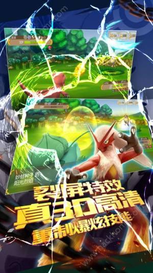 口袋妖怪挑战精灵道馆官网图5