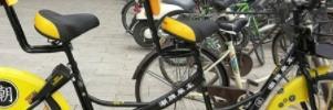 双人共享单车