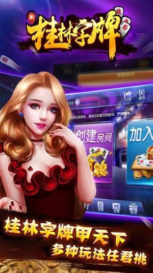 新桂林字牌安卓版图3