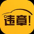 小迈违章查询数据安卓版app下载 v3.22
