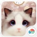 抖音里的斑布偶猫动态壁纸软件app下载 v1.4.9