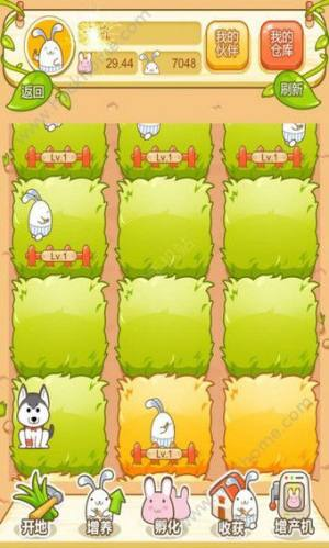 吉祥兔3.0图3