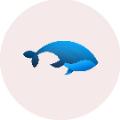 鲸鱼宝盒二维码app软件下载 v1.0
