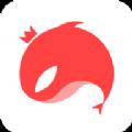 猎游科技app手机版软件下载 v4.3.9