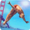 真实跳水游戏安卓版下载 v1.1.1