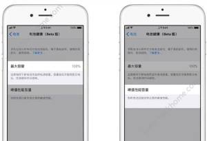 iOS11.3电池健康显示此iPhone无法确定电池健康状况什么意思?图片2