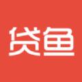 小贷鱼借款平台app官方下载 v1.0