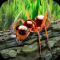 蚂蚁生存模拟器破解版
