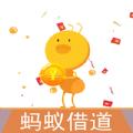 ��借道借款官方版app下�d安�b v1.0.0