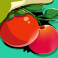 找番茄安卓app下载 v1.0