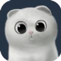 喵咪部落app手机版免费下载 v1.0