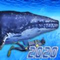 潜水模拟器2020游戏安卓中文版(Diving Simulator 2020) v1.0