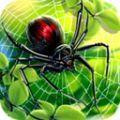 蜘蛛王模拟器游戏安卓版 v1.0.0