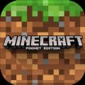 1.11.0.9我的世界手机版minecraft基岩版 v1.17.20.93442