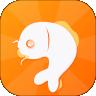 百万锦鲤app官方版下载 v1.0.3