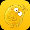金瓜转app官方版下载 v1.0