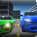 Real World Driver Sim游戏中文版下载 v1.5.3