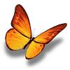金蝶转转发点赞app免费下载 v0.0.2