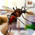 超级蚊子大乱斗游戏安卓最新版 v1.0