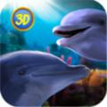 Dolphin Trainer VR游戏最新版 v1.0