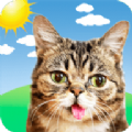 小兔猫天气预报app最新版 v1.0